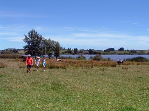 Lake Ngāroto