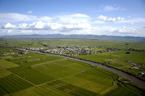 The Hauraki Plains