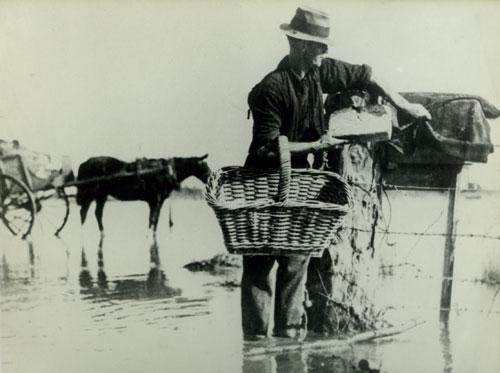 Flooding near Paeroa, 1936