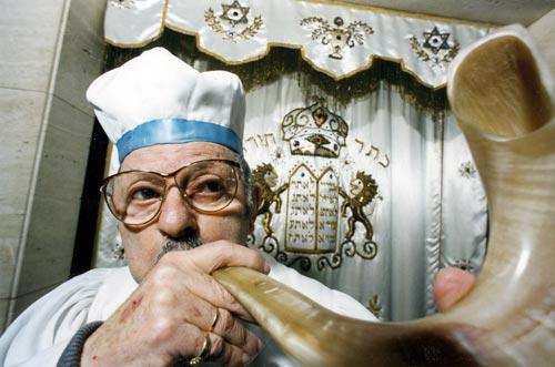Orthodox rabbi, Wellington