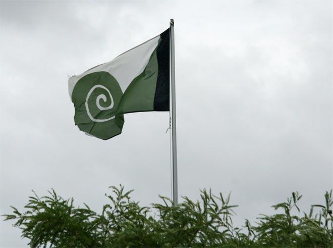 Hundertwasser flag