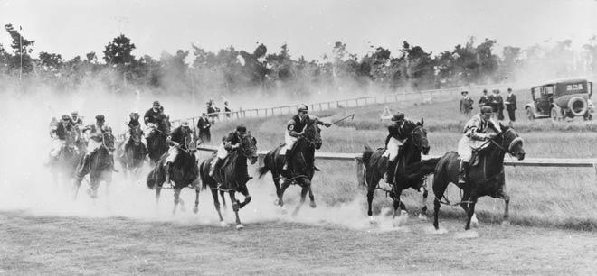 Trotting: saddle trots