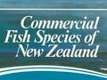 New Zealand fish species poster, 1977