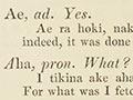 William Williams's Māori dictionary, 1844