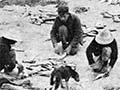 Catching fish at Pārengarenga, 1907