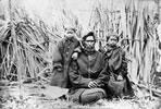 Wiremu Tāmihana Tarapīpipi Te Waharoa and family