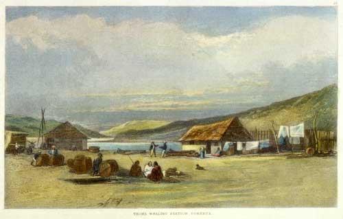 Paremata whaling station