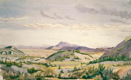 Kāingaroa plains, 1890