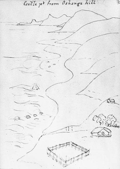 Karaka grove, Oahanga pā