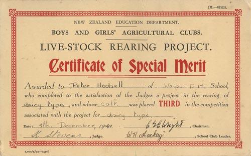 Certificate of special merit