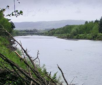 The Manawatū River
