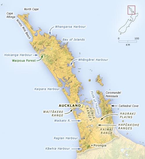 Northern New Zealand