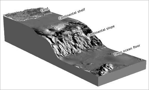 Continental slopes