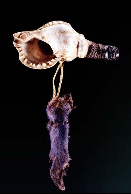 Pūtātara (shell trumpet)