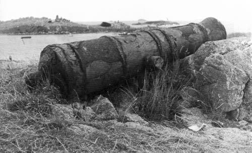Cannon, Ruapuke Island