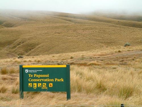 Te Papanui Conservation Park
