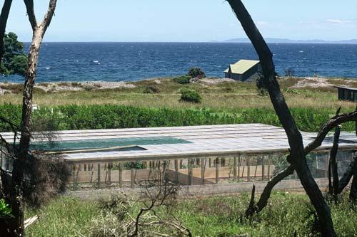 Tuatara enclosure, Little Barrier Island
