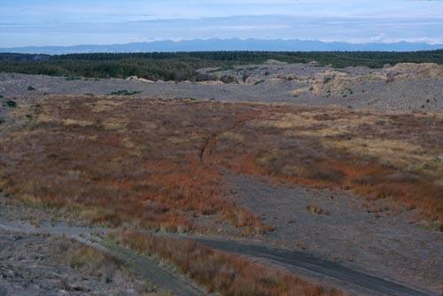 Ephemeral wetland, Tangimoana