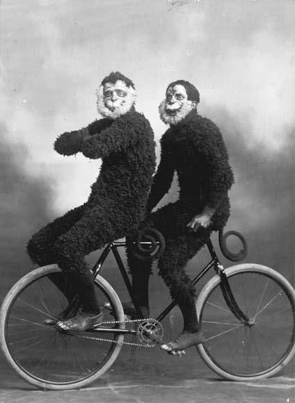 Monkey cyclists