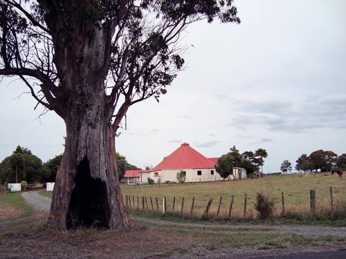 Rongomaiwahine, 2009