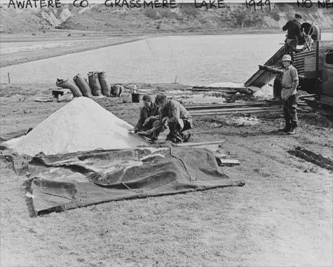 First salt harvest, April 1949