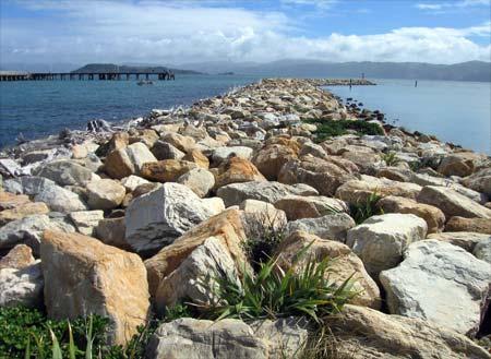 Breakwater blocks, Wellington Harbour