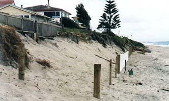 Restoring sand dunes