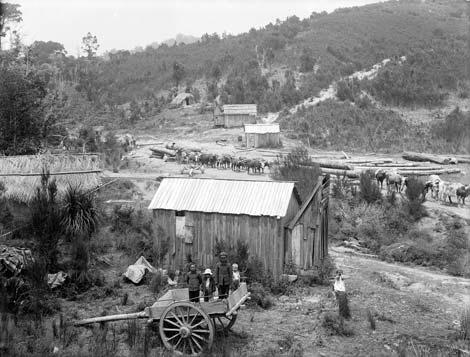 Timber camp