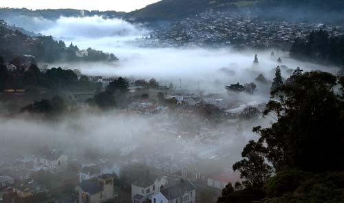 Fog, North East Valley, Dunedin