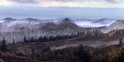 Kohu, ki Rotorua