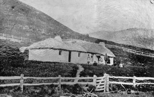 Mt Cook homestead