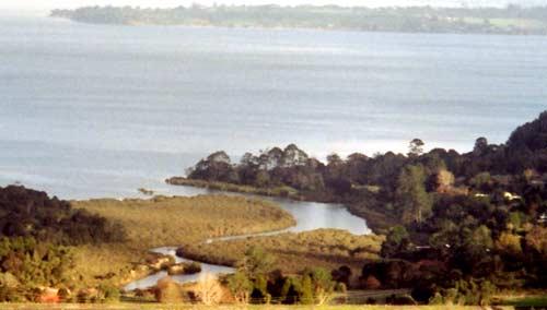 Paruroa (Great Muddy Creek)