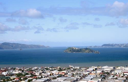 Matiu (Somes Island)