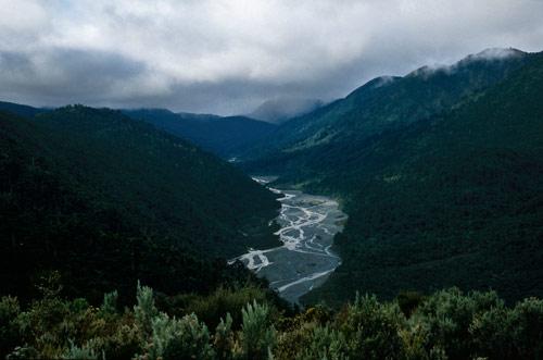 Orongorongo valley