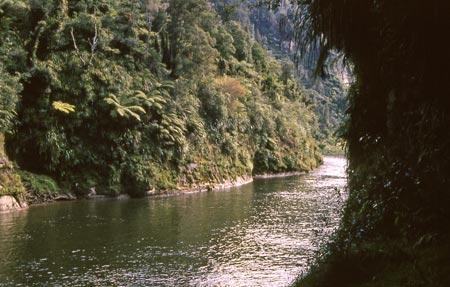 Inside Tamatea's cave