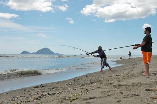 Fishing for kahawai