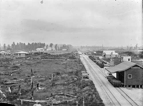 Mamaku around 1916