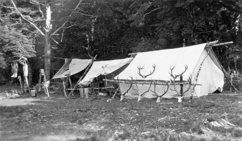 Deer cullers' camp