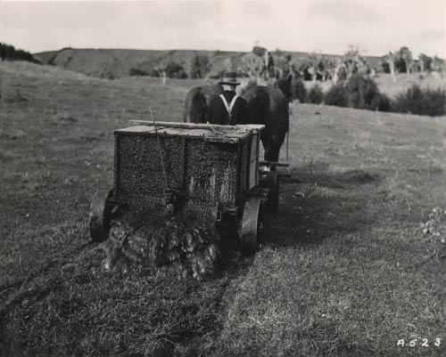 Spreading manure