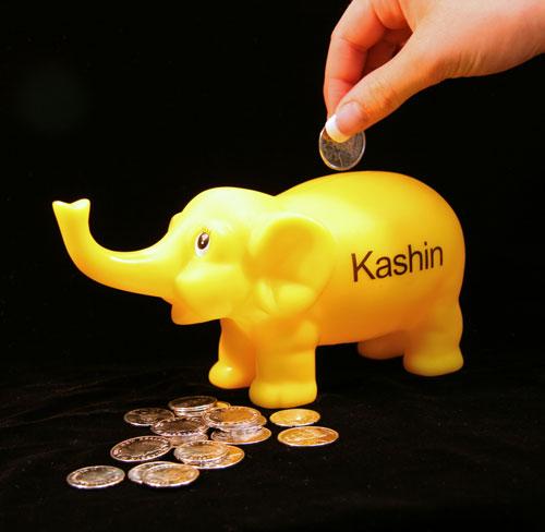 Kashin the elephant