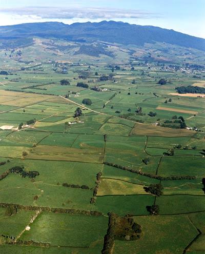 Pirongia mountain