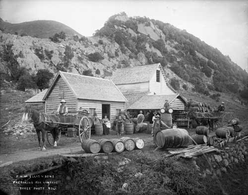 Ellis winery, Golden Bay