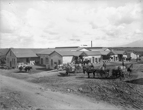 Kaūpokonui dairy factory