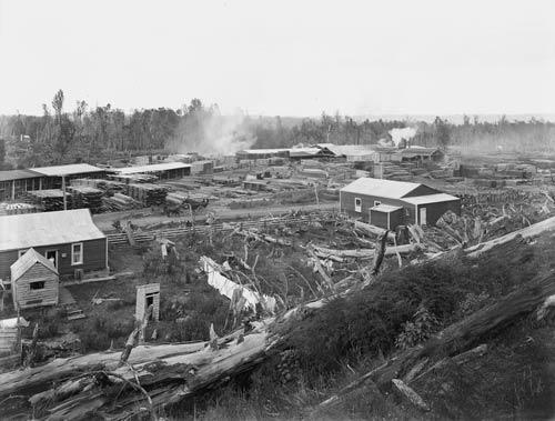 Sawmill, Ohakune