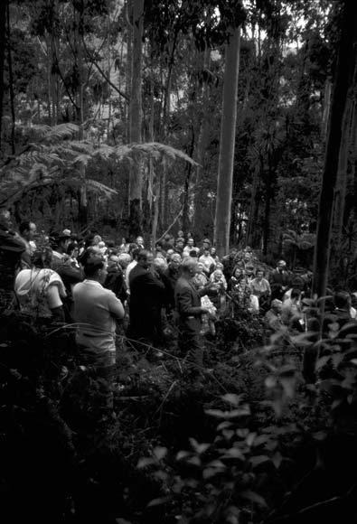 New Zealand Farm Forestry Association