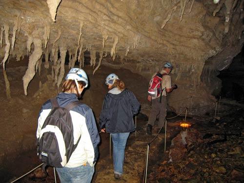 Stalactites, Ōpārara caves