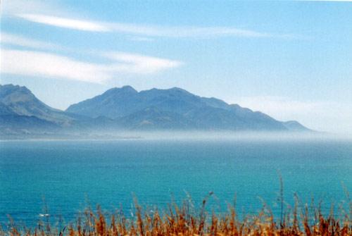 The view from Ngā Niho pā