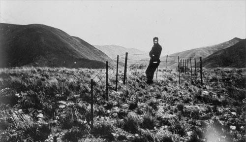 Distorted fenceline, Glynn Wye