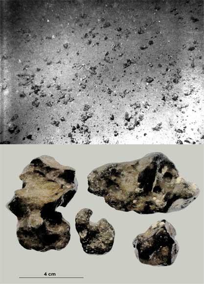 Phosphate nodules