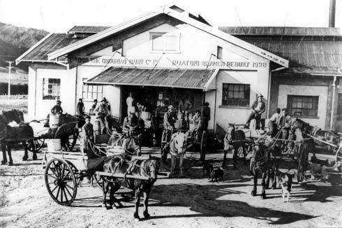 Dairy factory, Rūātoki